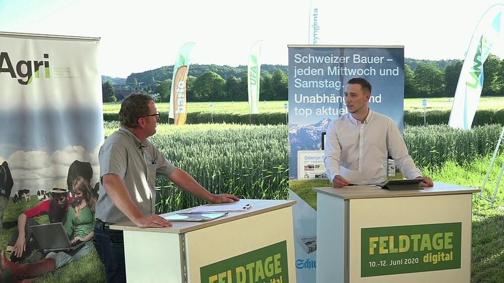 Video link: Feldtage Talk Freitag 12.06.2020 - Livestream direkt vom Feldtagegelände in Kölliken